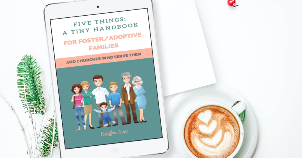 Five Things: A Tiny Handbook for Foster/Adoptive Parents